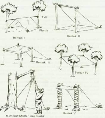 Cara Mebuat Bivak Di Hutan Dan Bentuk Nya Denianarki